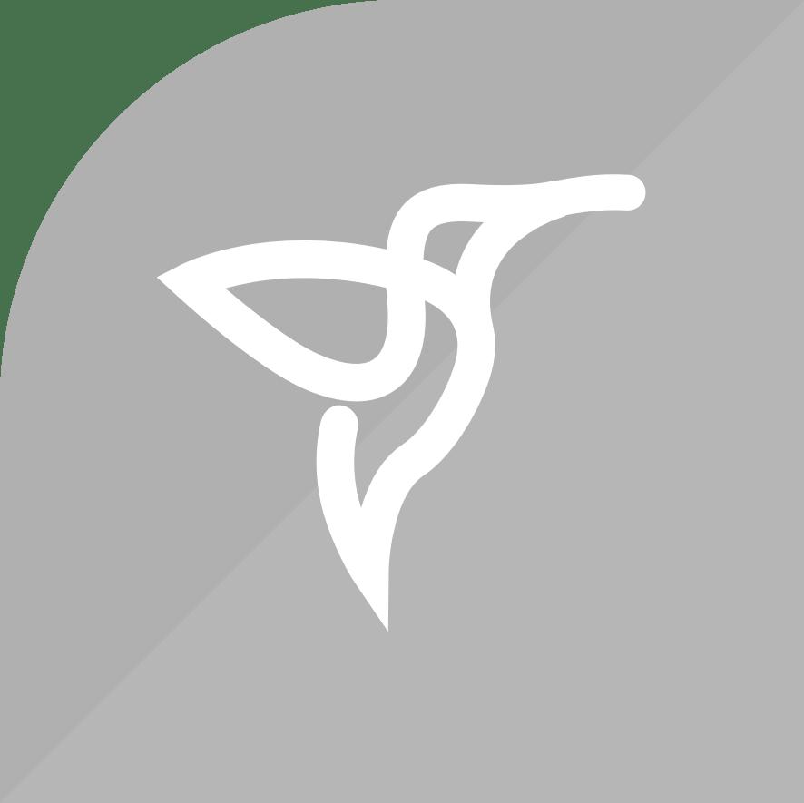 Colibiri icon big